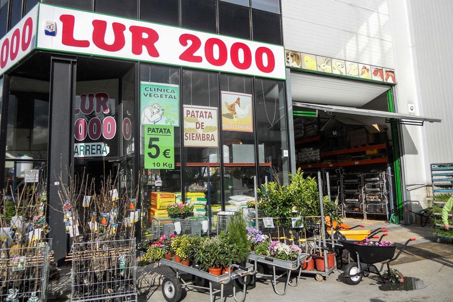 Lemoa Lur 2000