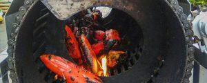 temporada-de-pimientos-asados
